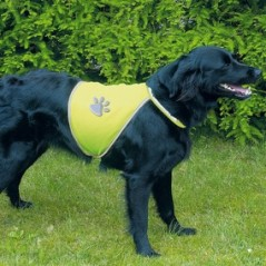 Veiligheidsjasje Fluo hond