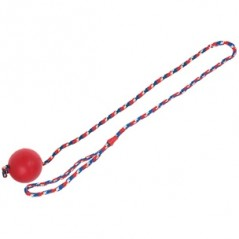 Rubber bal (7 cm) met koord