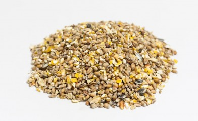 Kippengraan Gebroken Mais - Graan III Geel