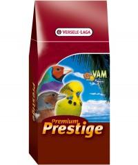 Prestige Australische Prachtvinken