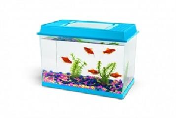 Fauna Box 6l
