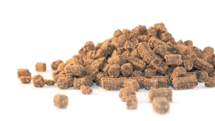 Faunus Dogfood - Puppy Large Breed