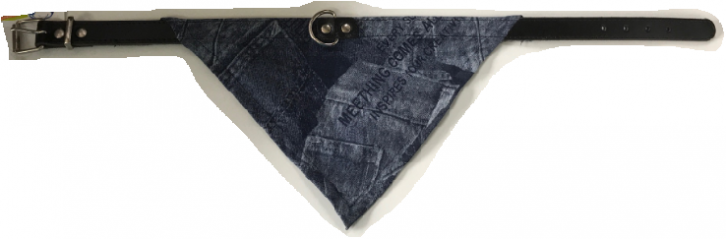 Halsband Bandana Jeans