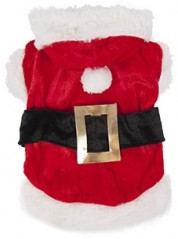 Hondentrui Kerstman Kostuum